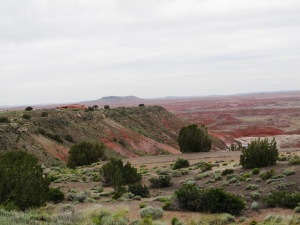 Painted Desert at Petrified Forest National Park in AZ